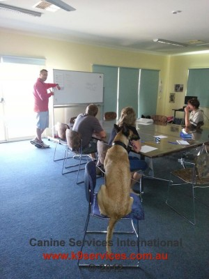 Brad Griggs training a class with his dog Lexus the Malinois
