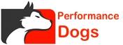 Problem Dog Training