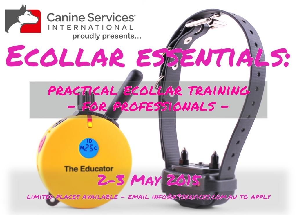 Ecollar Essentials Graphic 2.5.2015
